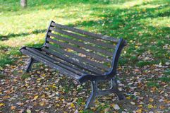 Isolated bench in the park Stock Photo