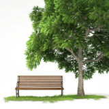 Isolated bench under tree Stock Images