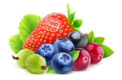 Isolated berries royalty free stock photo