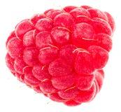 Isolated berry. One fresh raspberry fruit isolated on white back. Ground Stock Photos