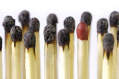 Isolated best match. Burnt matches with an intact one on white Stock Photos