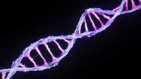 Isolated binary Digital Plexus DNA molecule strand Loop pink purple violet alpha