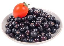 Isolated black currant with tomato on saucer Royalty Free Stock Image