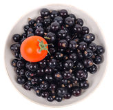 Isolated black currant with tomato on saucer Stock Image