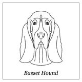 Isolated black outline head of basset hound on white background. Line cartoon breed dog portrait. Royalty Free Stock Images