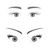 Isolated black and white beautiful female eyes set Stock Images