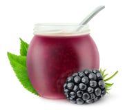 Isolated blackberry jam Stock Photos