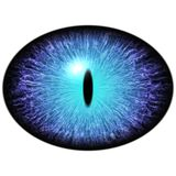 Isolated blue eye. Big elliptic eye with striped iris and dark thin elliptic pupil. With dark retina Royalty Free Stock Photography