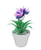 Isolated blue pink houseplant in flowerpot Stock Photo