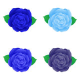 Isolated blue rose for decoration. Set of blue rose Stock Photos