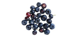 Isolated blueberries Royalty Free Stock Images
