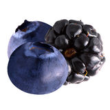 Isolated blueberry and blackberry. Isolated berries. Blueberries and blackberry isolated on white background as package design element. Healthy eating stock photo
