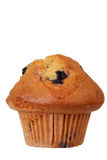 Isolated blueberry muffin Stock Photo