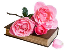 Isolated Book And Roses Royalty Free Stock Photography