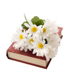 Isolated Book With Daisies. A closed book with some artificial daisies on top, isolated against a white background Royalty Free Stock Photos