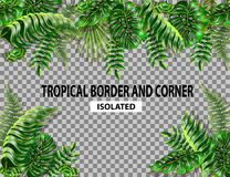 Isolated border and corner with tropical leaves. Monstera, fern and palm leaves border seamless. Isolated border and corner with tropical leaves Royalty Free Stock Photo