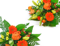 Isolated bouquet royalty free stock images