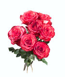 Isolated bouquet of red roses Royalty Free Stock Image