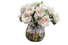 Isolated bouquet of roses on white background Royalty Free Stock Images