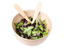 Isolated bowl of salad Royalty Free Stock Images