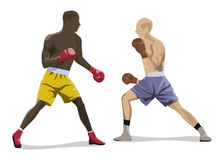 Isolated box fighting. Isolated box fighting on white background. Two men in boxing gloves and uniform Royalty Free Stock Photos