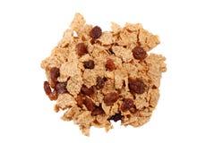Isolated bran raisin cereal Stock Image
