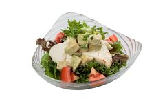 Isolated Breast chicken salad including avocado, tomato and red oak topping with wild rocket and salad dressing Royalty Free Stock Image