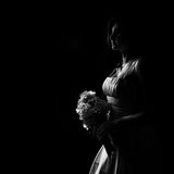 Isolated Bride Stock Image