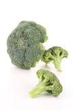 Isolated broccoli Stock Photos