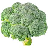 Isolated broccoli on white background. Isolated vegetables. Raw Broccoli isolated on white background with clipping path Stock Photography