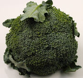 Isolated broccolli. On a white background Stock Photo