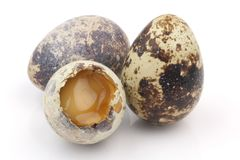 Isolated broken partridge egg Stock Photography