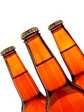 Isolated Brown Beer Bottle Background Royalty Free Stock Photography