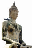 Isolated Buddha statue on white background with two birds on his shoulder Stock Images