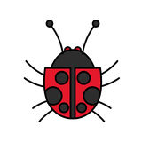 Isolated bug design Royalty Free Stock Image