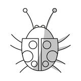 Isolated bug design Royalty Free Stock Photography