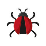 Isolated bug insect design vector illustration