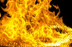 Isolated burning flame or fire on black background. Stock Photos