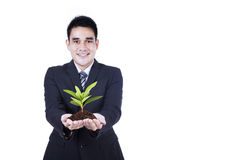 Isolated businessman holding a plant Stock Image