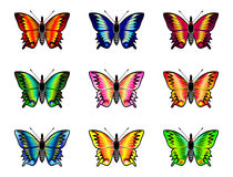 Isolated butterflies set on  white background Royalty Free Stock Photos