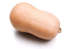 Isolated butternut squash. Simple, isolated image of a butternut squash royalty free stock photos