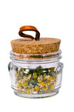 Isolated camomile tea in the glass pot royalty free stock photo