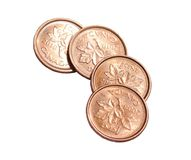 Isolated Canadian Pennies. Four shiny copper Canadian Pennies