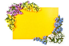 Isolated card with flowers Stock Images