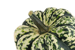 Isolated carnival squash on white Stock Photo