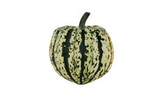 Isolated carnival squash on white Royalty Free Stock Images