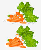 Isolated carrot character Stock Photography