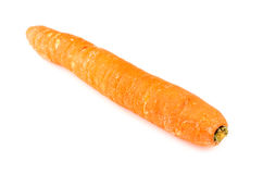 Isolated carrot Royalty Free Stock Images