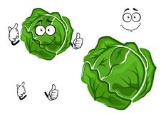 Isolated cartoon green cabbage vegetable Stock Photo