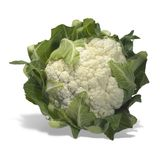 Isolated cauliflower Stock Photography